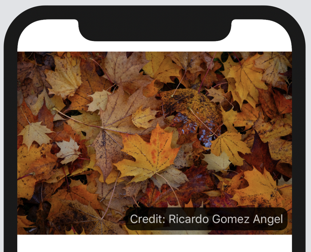 Text overlay on image in SwiftUI
